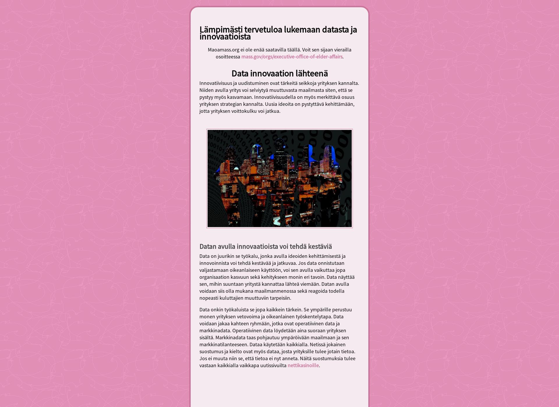 Screenshot for datatointelligence.fi
