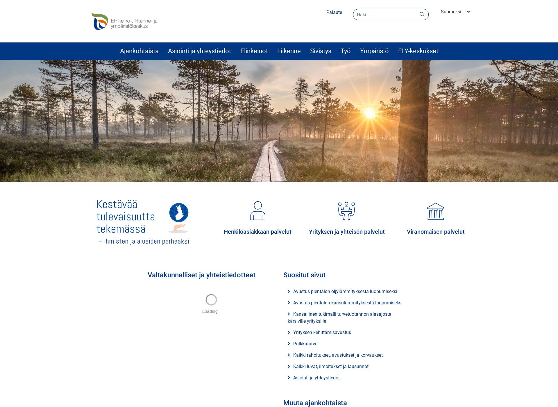 Screenshot for ely-keskus.fi