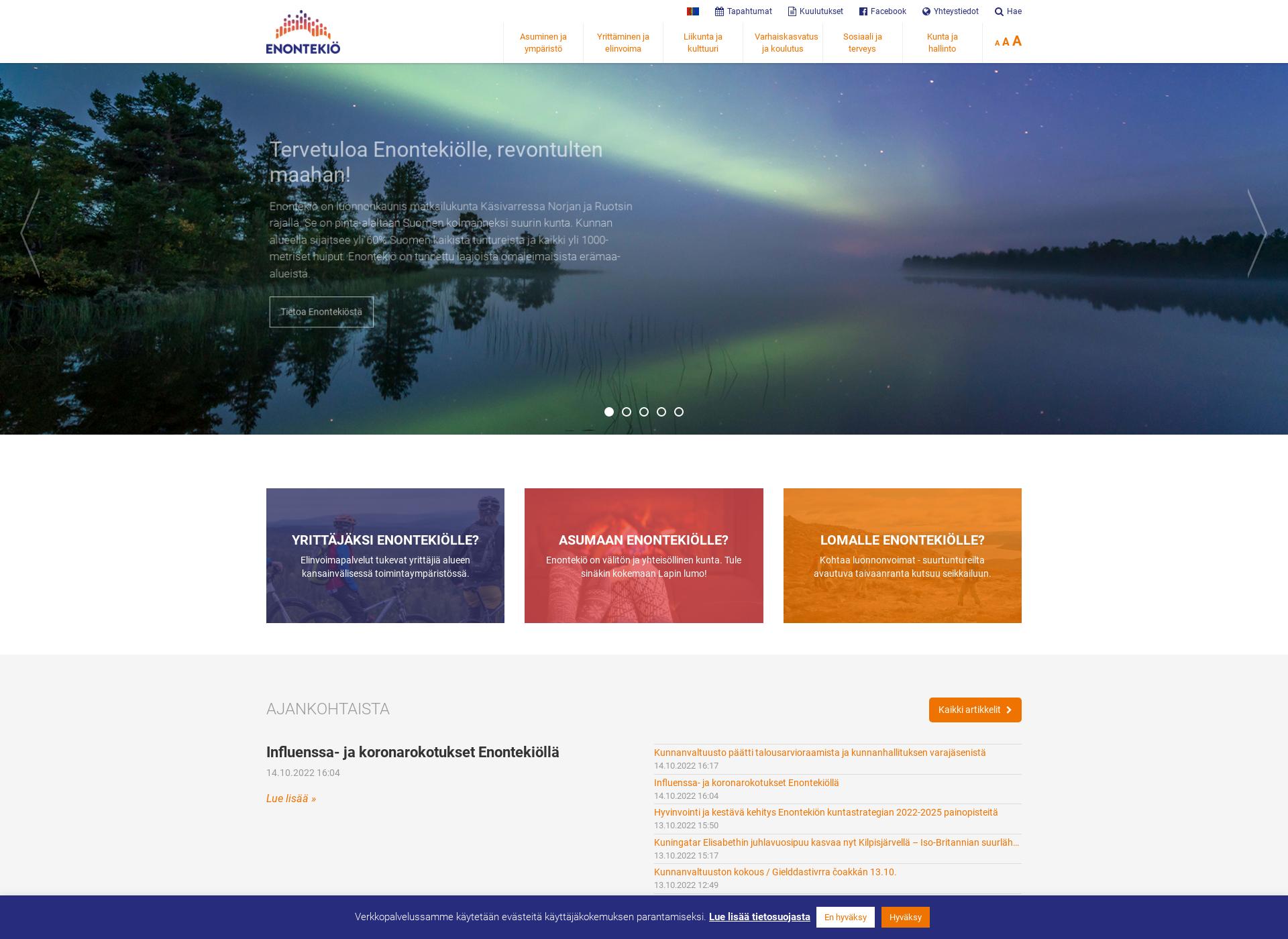 Screenshot for enontekio.fi