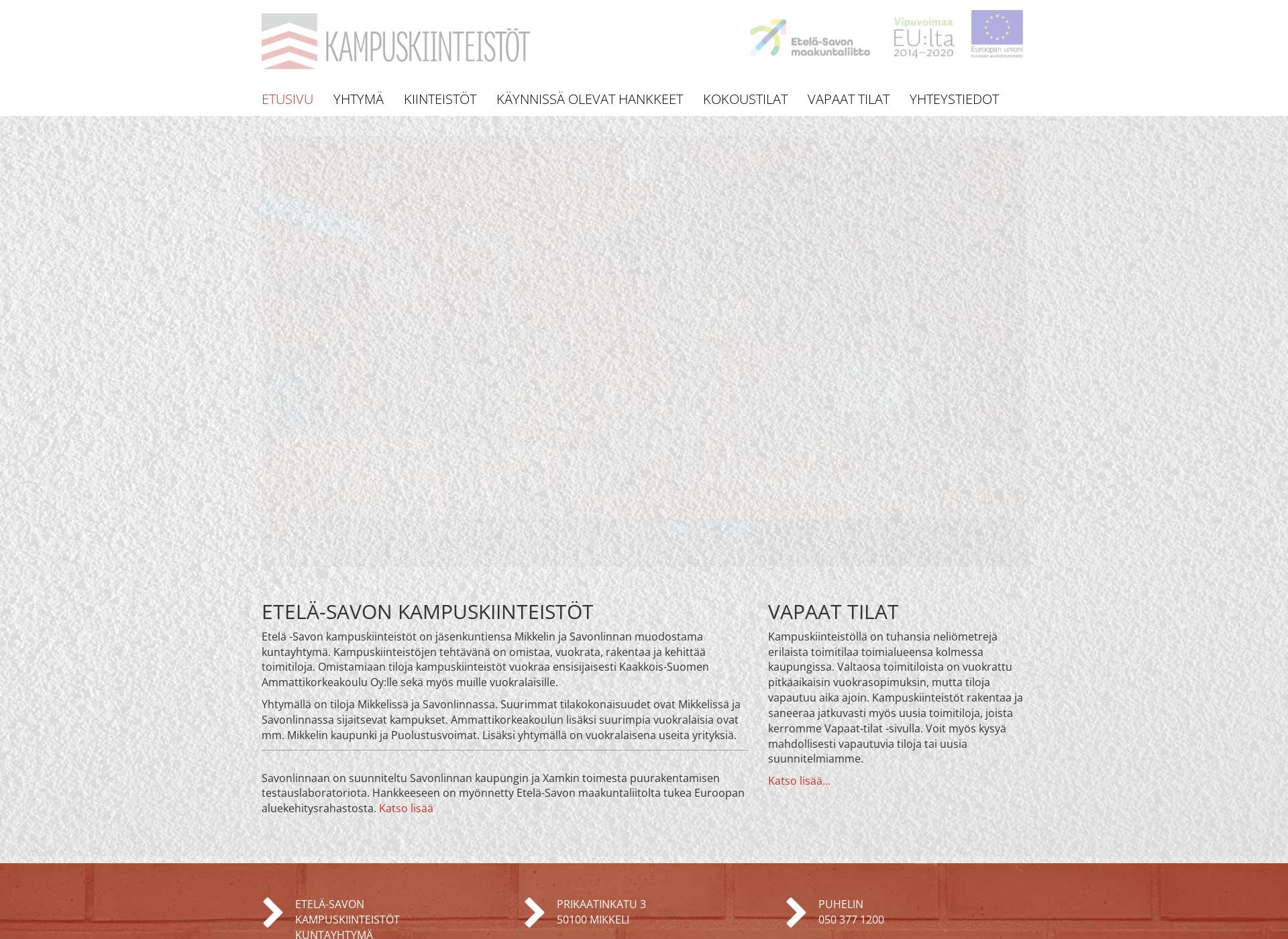 Screenshot for esakk.fi