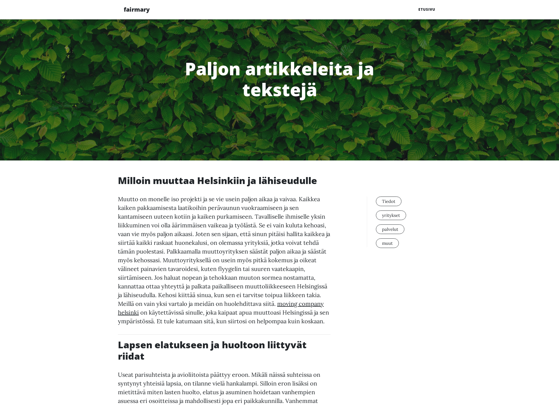 Screenshot for fairmary.fi