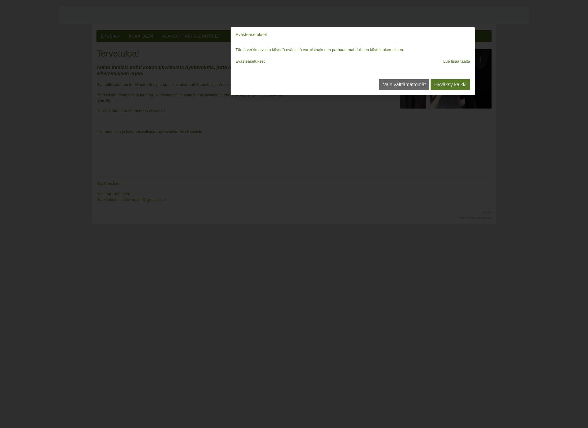 Screenshot for flowmotion.fi