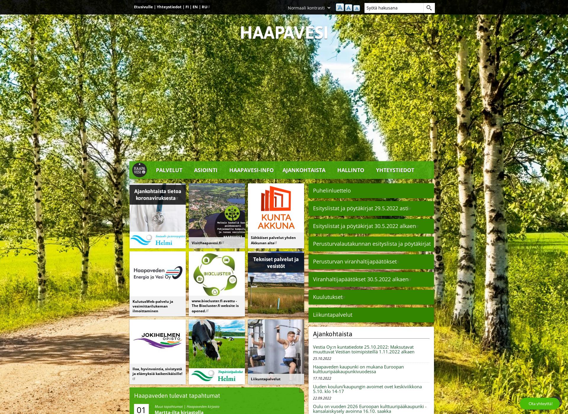 Screenshot for haapavesi.fi