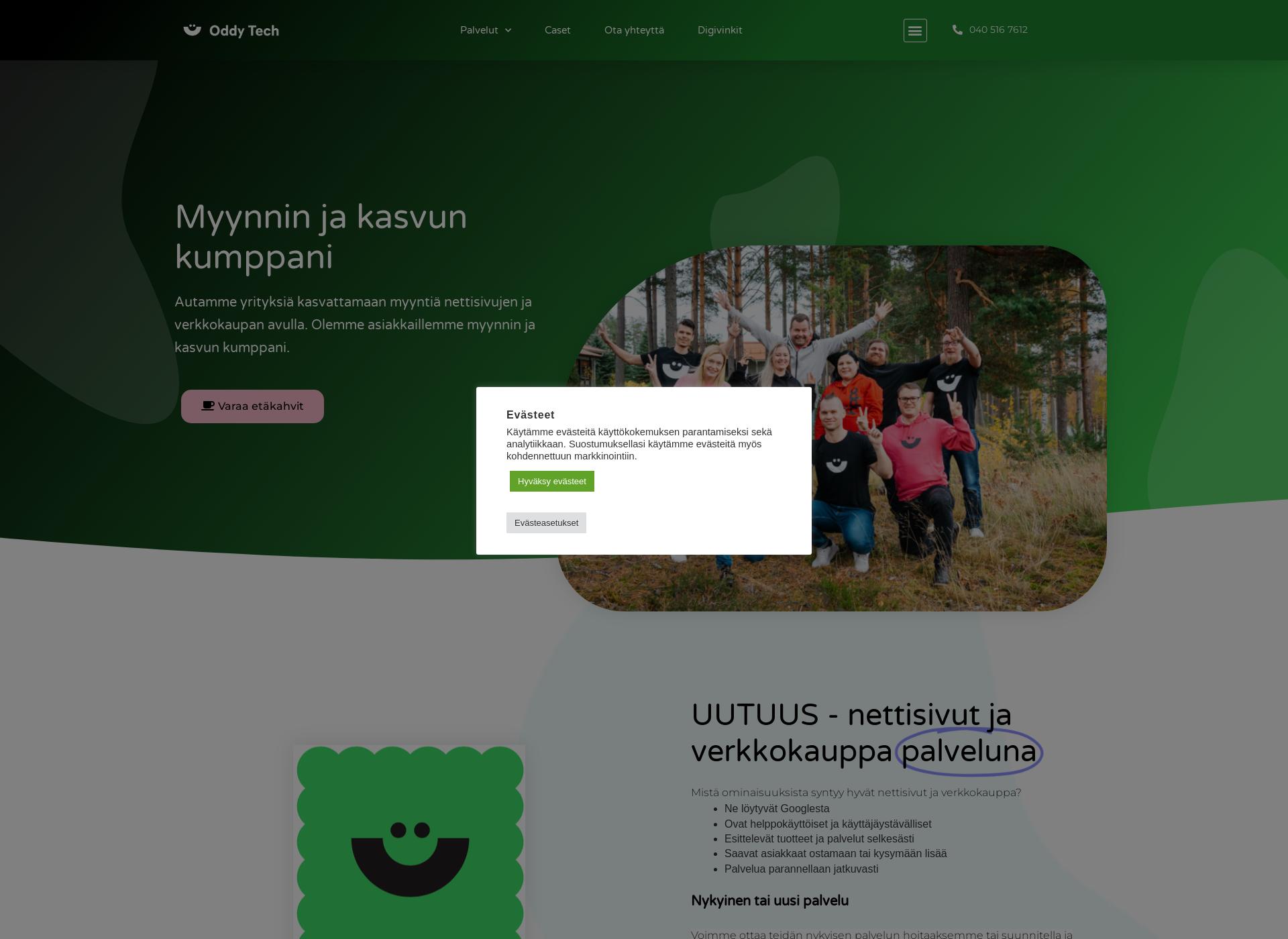 Näyttökuva it-systems.fi