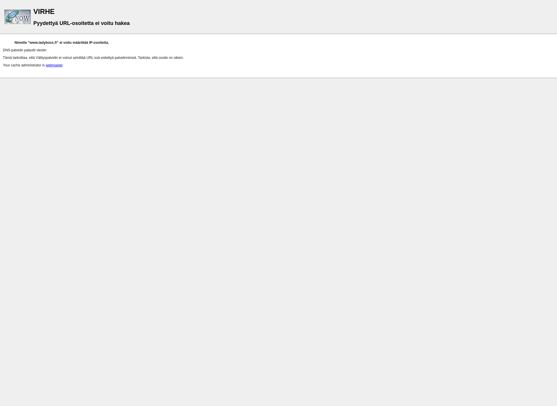 Skärmdump för ladyboss.fi