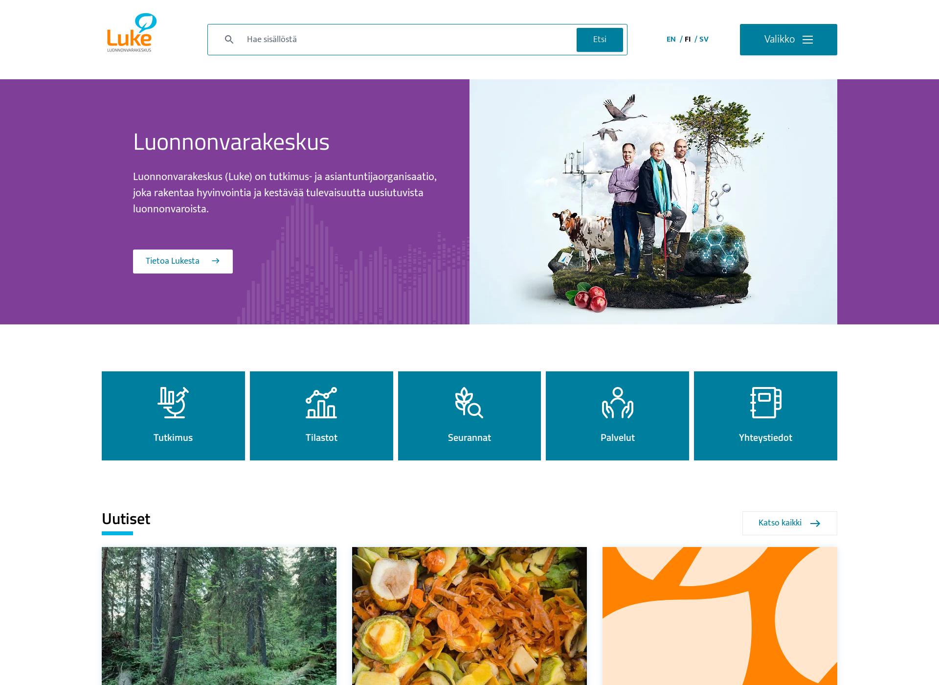 Screenshot for luke.fi