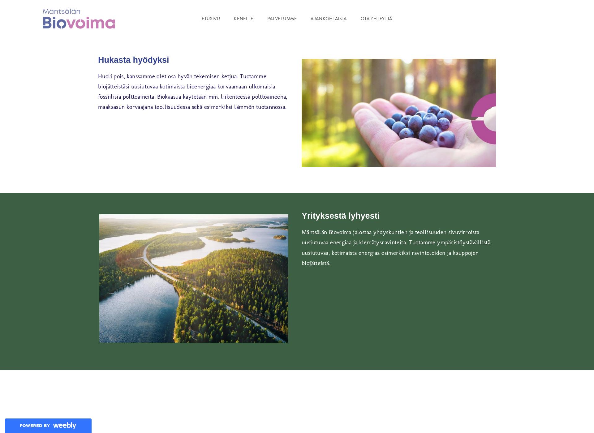 Screenshot for mantsalanbiovoima.fi