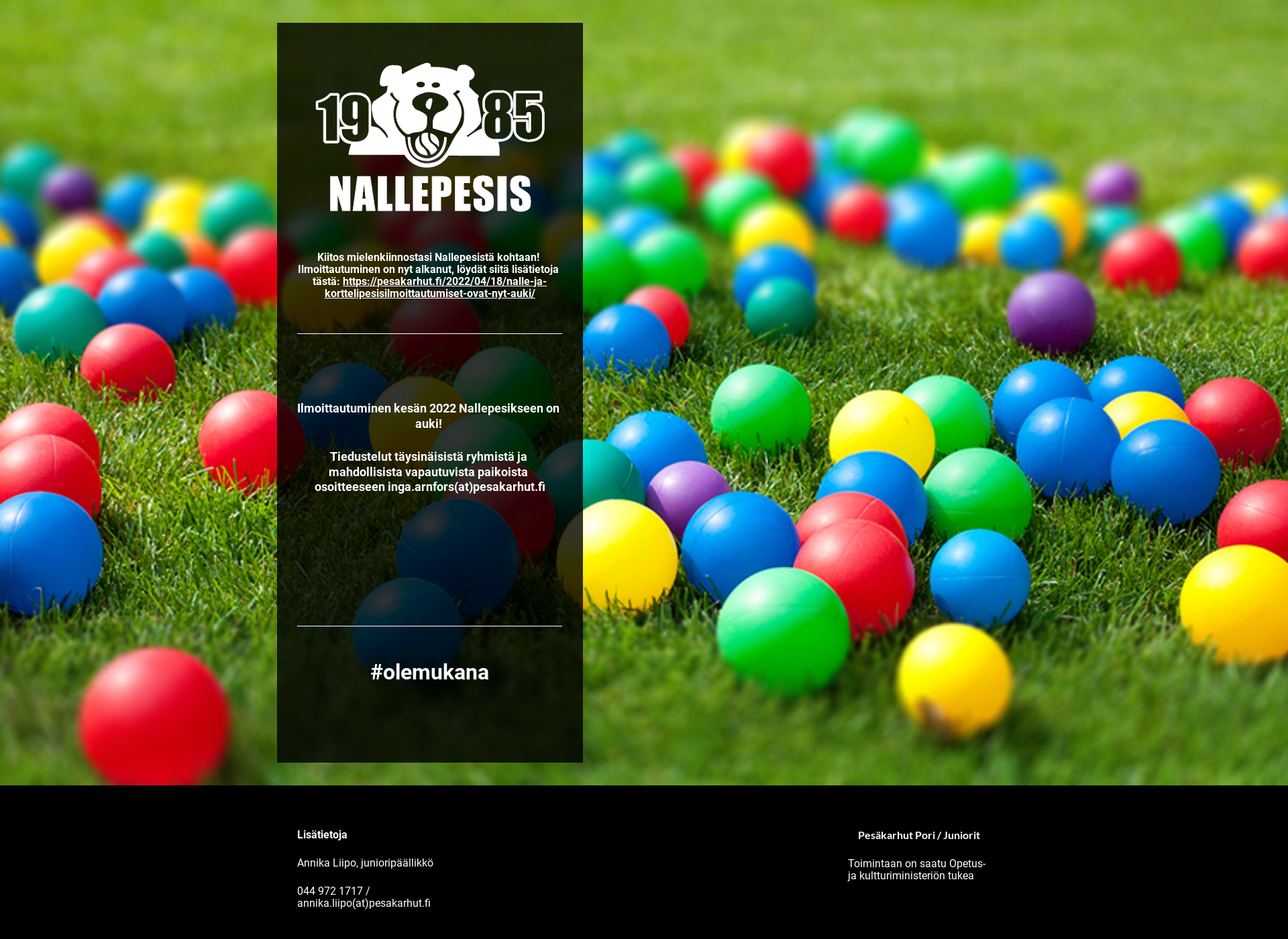 Screenshot for nallepesis.fi