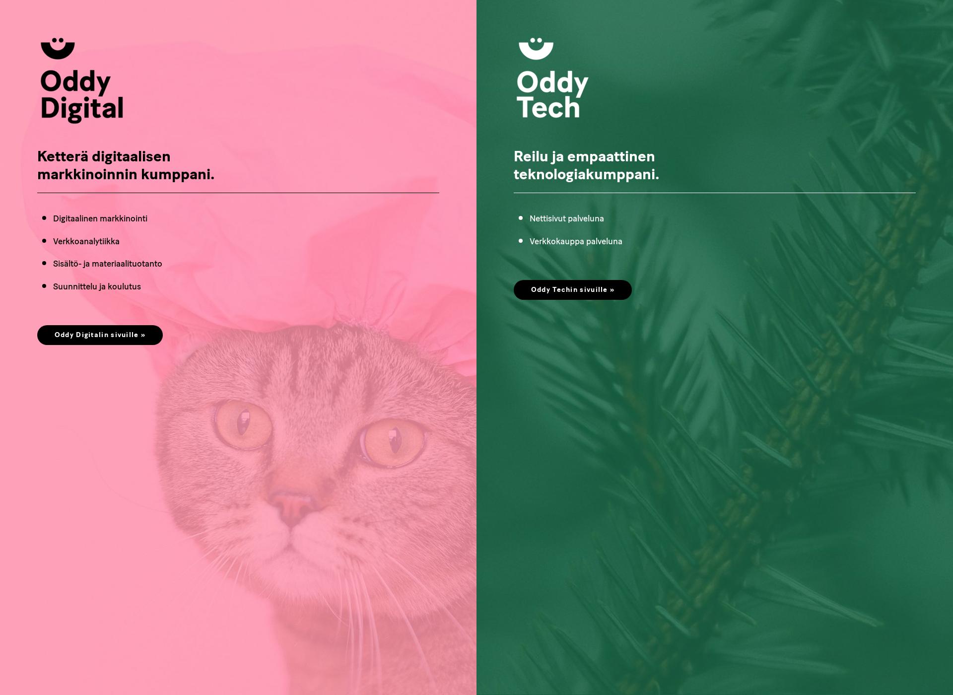 Screenshot for oddy.fi