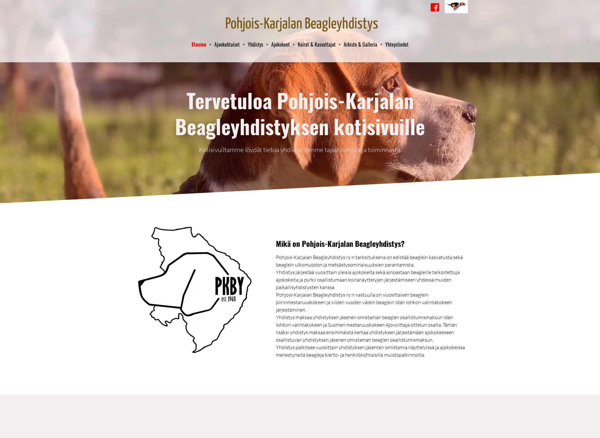 Screenshot for pkbeagle.fi