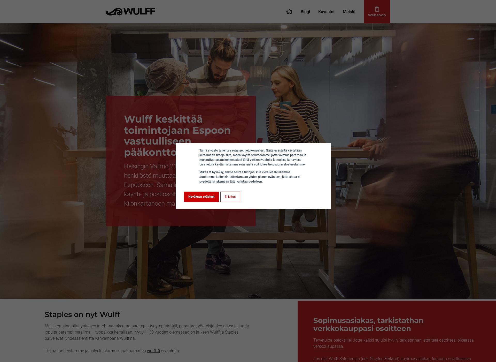 Screenshot for wulffsolutions.fi